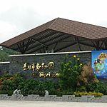台北市立動物園にはパンダやカワウソ眺められる!